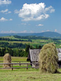 Pile di fieno nelle montagne di estate Fotografia Stock