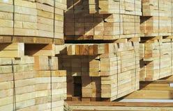 Pile di legno della costruzione Immagine Stock