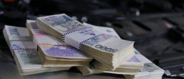 Pile di soldi su un motore di automobile Immagine Stock Libera da Diritti