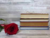 A pile of different coloured old books and a red rose on white wood background. Reading habits. Memories. Retro style. A pile of different coloured old books royalty free stock photos