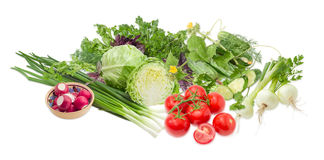 Pile of different vegetables and potherb on a light background. Pile of different early vegetables, like young white cabbage, tomatoes, onion bulbs, green onion Stock Images