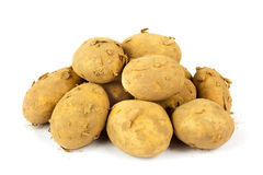 A pile of dirty organic new potatoes Royalty Free Stock Photo