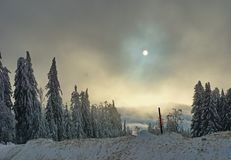 Snow, trees and cloudy sky with sun partly covered by clouds stock photos