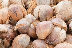 Pile of discarded coconut husk in coconut farm, Th Royalty Free Stock Photos