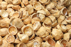Pile of discarded coconut husks Royalty Free Stock Photo