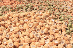 Pile of discarded coconut husks Royalty Free Stock Photography