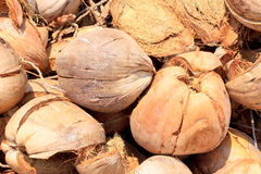Pile of discarded coconut husks Royalty Free Stock Images