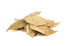 Pile of dried bay leaves isolated Royalty Free Stock Photography