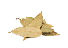 Pile of dried bay leaves isolated Stock Photography