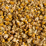 Pile of dried chamomile flowers. A lot of dried out chamomile flowers ready for tea making Stock Image