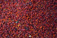 Pile of dried chiltepe peppers for sale at Chichicastenango. Market Guatemala Royalty Free Stock Photography