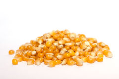 Pile dried corn isolated Stock Image