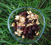 Pile Of Dried Cranberries and Walnuts Royalty Free Stock Image