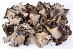 Pile of dried Horn of Plenty mushrooms over white Royalty Free Stock Photography