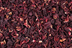 Pile of dried petals of hibiscus Royalty Free Stock Photo