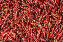 Pile of dried red chilli peppers texture background. Close up. Traditional vegetable market in Bangkok, Thailand. Pile of dried red chilli peppers texture Stock Image
