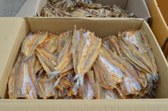 Pile of dried seafood in packed paper box Royalty Free Stock Photography