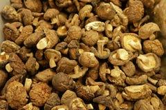 Pile of dried shiitake mushrooms, texture background stock image