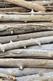 A pile of driftwood Stock Photo