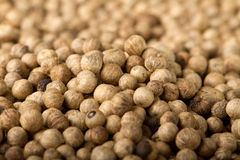 Pile of dry black pepper (lat. Piper nigrum) Royalty Free Stock Photography