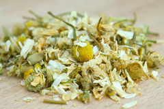 Pile of dry chamomile. Royalty Free Stock Image