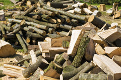 Pile of dry chopped firewood Royalty Free Stock Photo