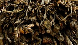 A pile of dry firewood. A close up view of a pile of dry firewood for background use Royalty Free Stock Photography