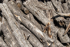 Pile of dry firewood Royalty Free Stock Photos