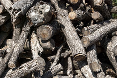 Pile of dry firewood Royalty Free Stock Photo