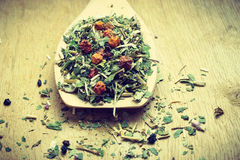 Pile of dry herb leaves and fruits on wooden spoon Stock Photo