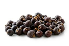 A pile of dry juniper berries. A pile of dry juniper berries  on white Royalty Free Stock Images