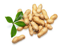 Pile of dry roasted peanuts isolated on white background. Royalty Free Stock Image