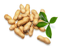 Pile of dry roasted peanuts isolated on white background. Stock Image