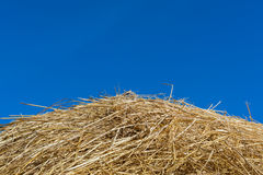 A pile of dry straw texture and blue sky, useful for backgrounds Stock Photography