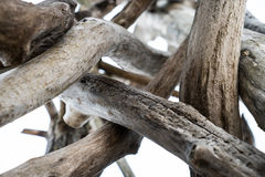 Pile of dry wood. On the beach Royalty Free Stock Image