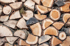 A pile of dry wood 0 Stock Photography