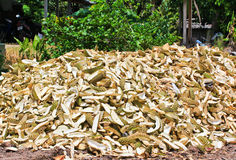 Pile of durian peels Stock Image