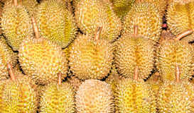 Pile of durian Royalty Free Stock Photo