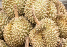 Pile of durian Stock Photos