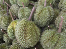 A Pile of Durians Royalty Free Stock Images