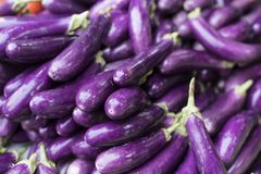 Pile of eggplant for sale at local fresh market Stock Image