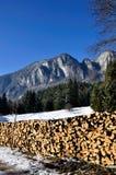 Pile en bois Photo stock