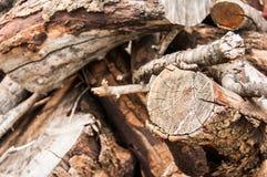 Pile en bois avec le tronçon Photographie stock