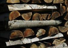 Pile en bois d'arbre de bouleau Image stock