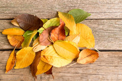Pile of fallen colorful autumn leaves on the wooden background royalty free stock photos