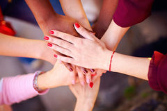 Pile of female multiethnic hands in union sign Royalty Free Stock Photos