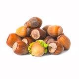 Pile of filbert nuts Royalty Free Stock Photography