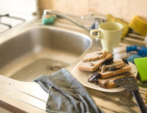 Pile of filthy dishes infested with roaches Royalty Free Stock Image