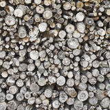 Pile of fire wood Stock Image