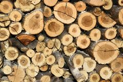 Pile of fire wood background texture Stock Photos